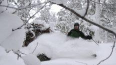 Freeride testar: 2015 års skidor som funkar för hela berget