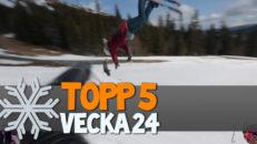 Topp 5: Vecka 24
