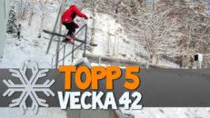 Topp 5: Vecka 42