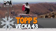 Topp 5: Vecka 43