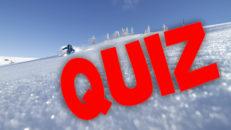 Quiz: Skidnäringen (nu med facit)