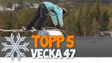 Topp 5: Vecka 47
