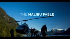 Kolla in: Dave Treadway – The Malibu Fable