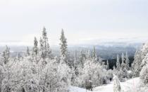 Här är det redan vinter i Sverige