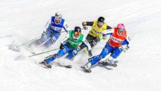 Ledigt Jobb: Tränare i Skicross