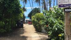 Sri Lankas vågor lockar Adam Widén
