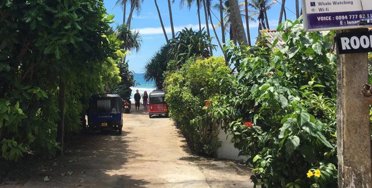 En kort liten lummig gränd leder ned till Indiska Oceanen från Adam Widéns nya surfhus på Sri Lanka.