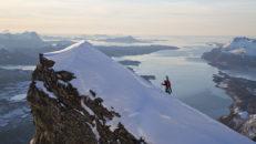 Glomfjord: Topptur bland havsörnar och hälleflundror