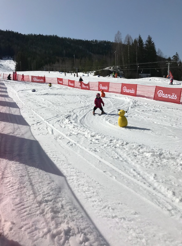 Elin Bylund