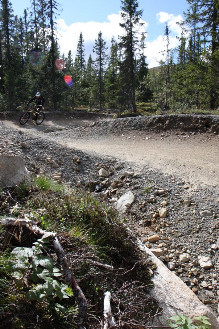 Olve Norderhaug cyklar igenom ett skogigt parti med flera kurvor på Magic Moose.