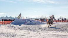 Galopperande hästar som drar skidåkare mitt i Åre