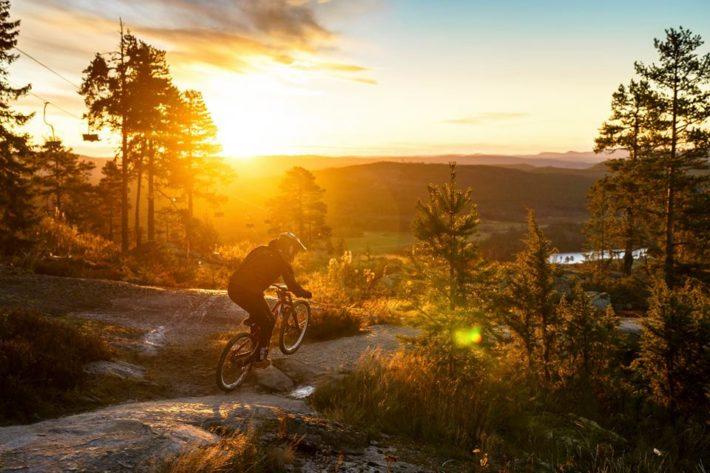 Järvsö Bergscykel Park är Hälsinglands eget cykelparadis.