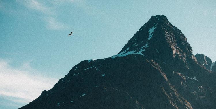 Vem hade anat att man ibland bestiger berg för att hitta vågor i Nordnorge, inte krönikören i alla fall.