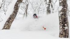 Geto Kogen i Japan – massa puder, inga skidåkare