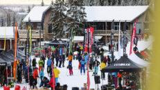 Vilken är årets bästa allmountainskida vintern 2019/2020?