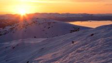 Evig vinter: Ett helt år med skidåkning