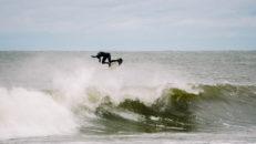 Tim Latte: – Mina planer är att surfa allt, överallt!