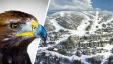 Ny skidanläggning på gång i Sverige: Björnrike Syd