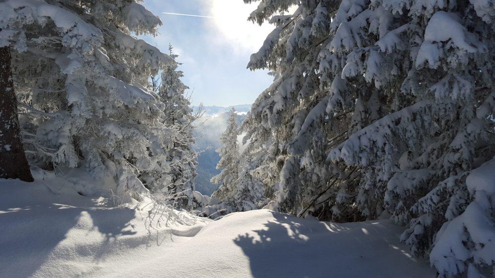 ski-1156460_1920-1000x563.jpg