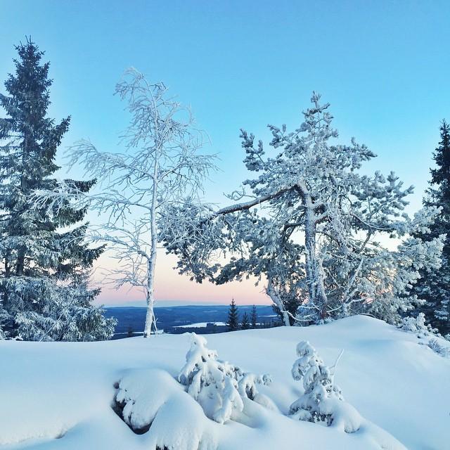 Säfsen har nu öppet upp på toppen och har fått lite nysnö lagom till jul.