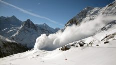 Över 10 döda i laviner i alperna