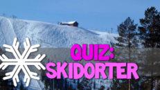 Quiz: Skidorter