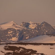 15 June 2020.